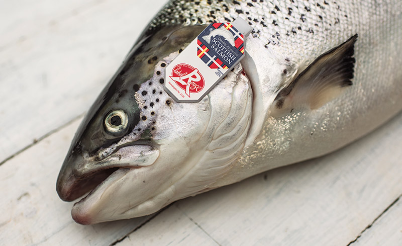 fresh salmon with label rouge logo on gill tag